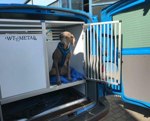 Enkele hondenbox voor auto