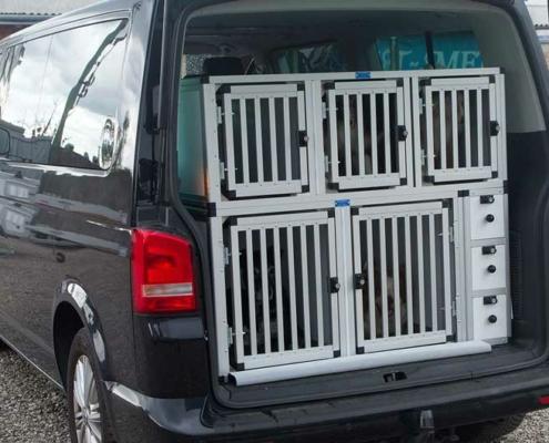 Meerdere hondenboxen in auto